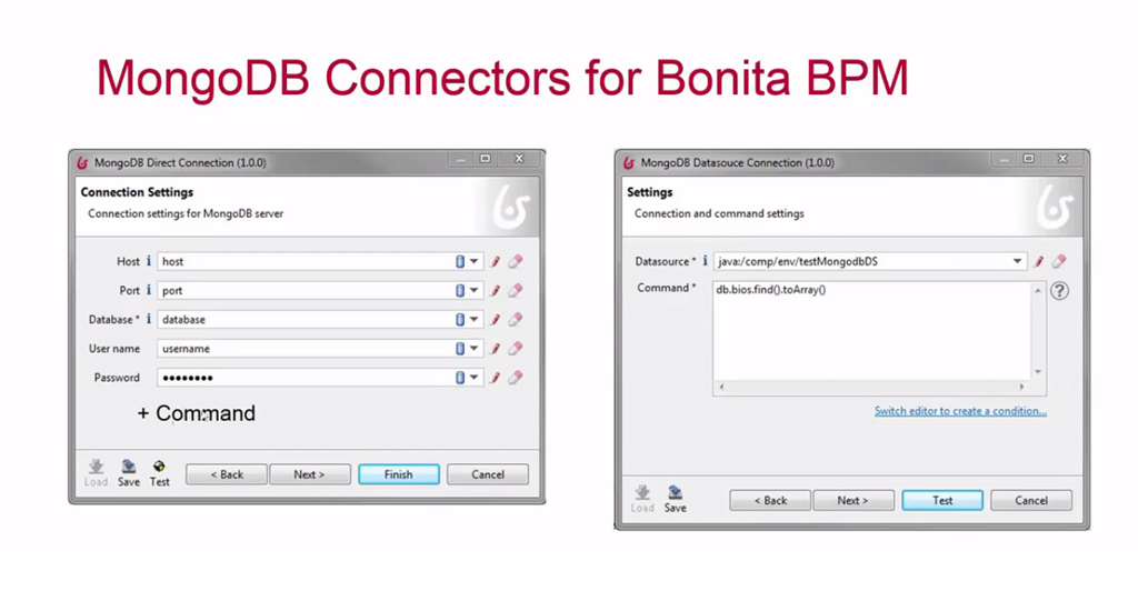 MongoDB Connectors for Bonita BPM